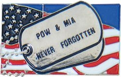 POW/MIA Never Forgotten Hat Pins