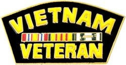 Vietnam Veteran Hat Pins
