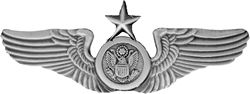 Senior Air Crew Wings Air Force Pins