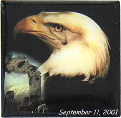 911 Eagle Hat Pins