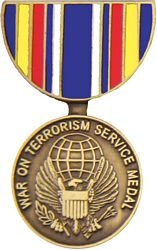 War On Terrorism Service Hat Pins