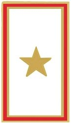Gold Star Hat Pins