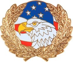Eagle Flag Wreath Hat Pins