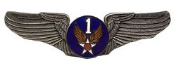 1st Air Force Air Corps Wings