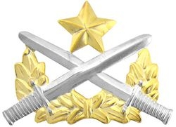 Vietnam Ranger Badge