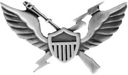 Air Assault Wings