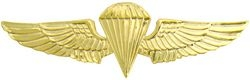 Marine Jump Wings (gold)
