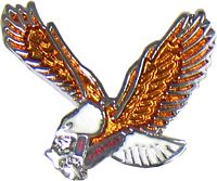 Eagle Hat Pins