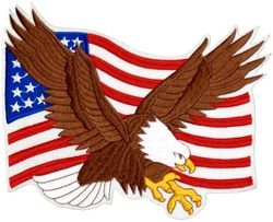 USA Flag and Eagle Back Patches