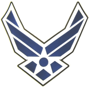 Air Force Back Patches
