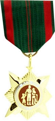Vietnam Civil Action 1st Class Full Size Medals