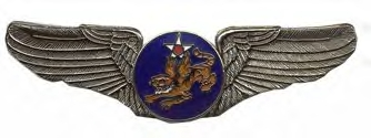14th Air Force Air Corps Wings