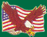 USA Flag and Eagle Patches