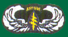 5th Special Forces Wings Patches