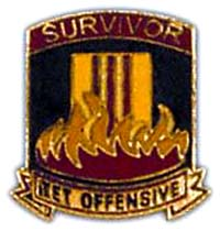Vietnam Survivor TET Hat Pins